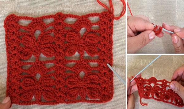 Como hacer Punto libelula a crochet paso a paso